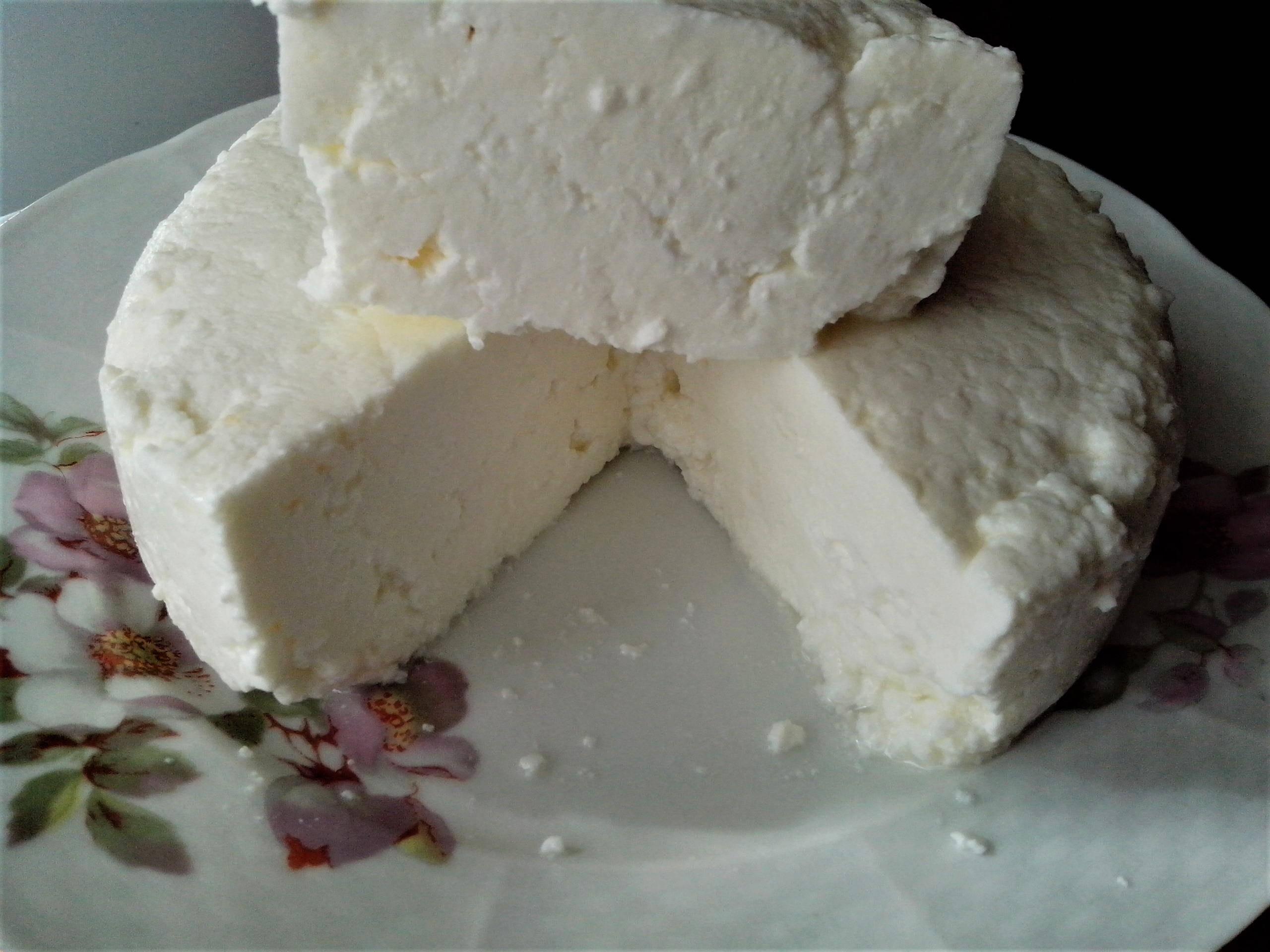 Адыгейский сыр в домашних условиях. пошаговый рецепт с фото • кушать нет