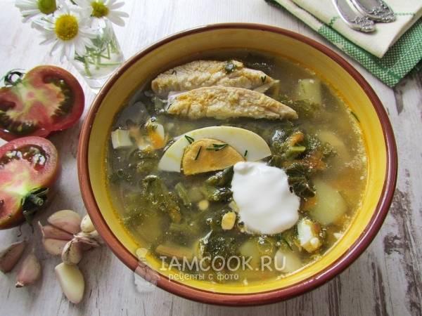 Зелёный борщ со щавелем и шпинатом - рецепт с фотографиями - patee. рецепты