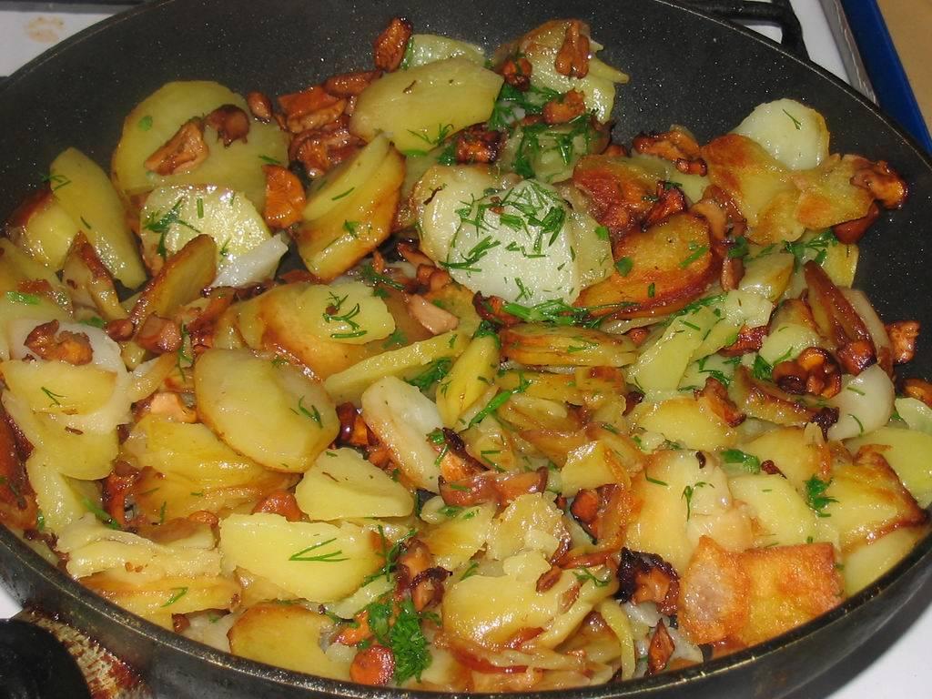 Как приготовить свежие опята с картошкой: рецепты жареных и тушеных грибов с картофелем