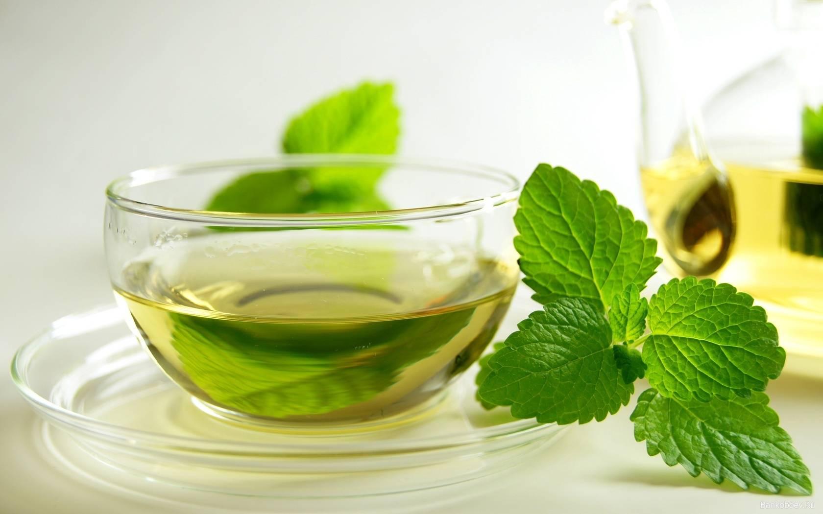 Имбирь при простуде и гриппе: рецепты приготовления, противопоказания