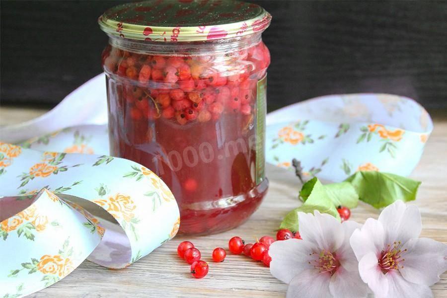 Компот из черемухи на зиму: 4 рецепта приготовления - onwomen.ru