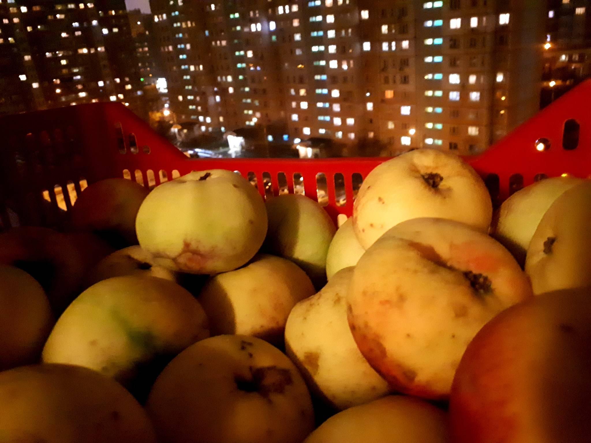 Фруктовые чипсы - запись пользователя наташа (id2022495) в сообществе кулинарное сообщество в категории диетические блюда - babyblog.ru