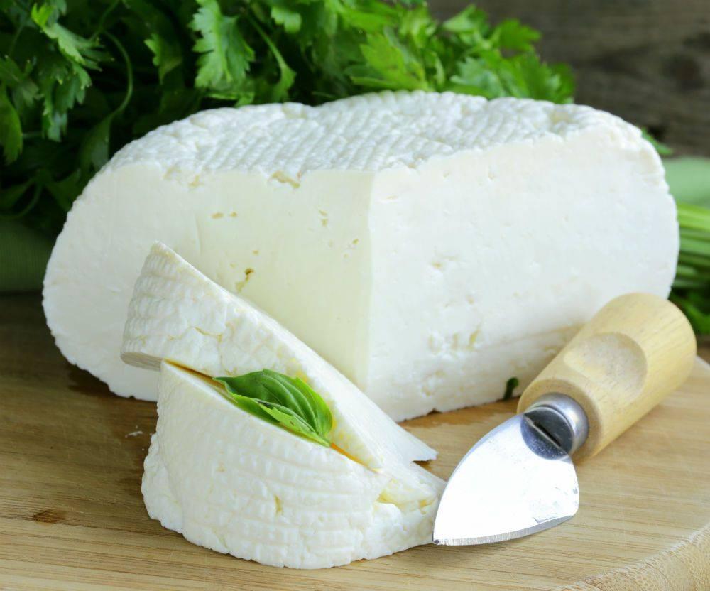 Как в домашних условиях сделать адыгейский сыр