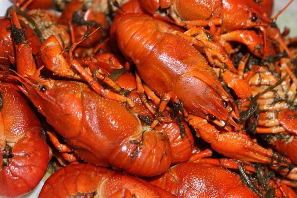 5 лучших способов вкусно сварить раков