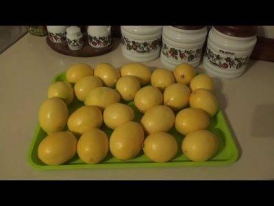 Топ 5 простых пошаговых рецептов лимона с сахаром в банке на зиму