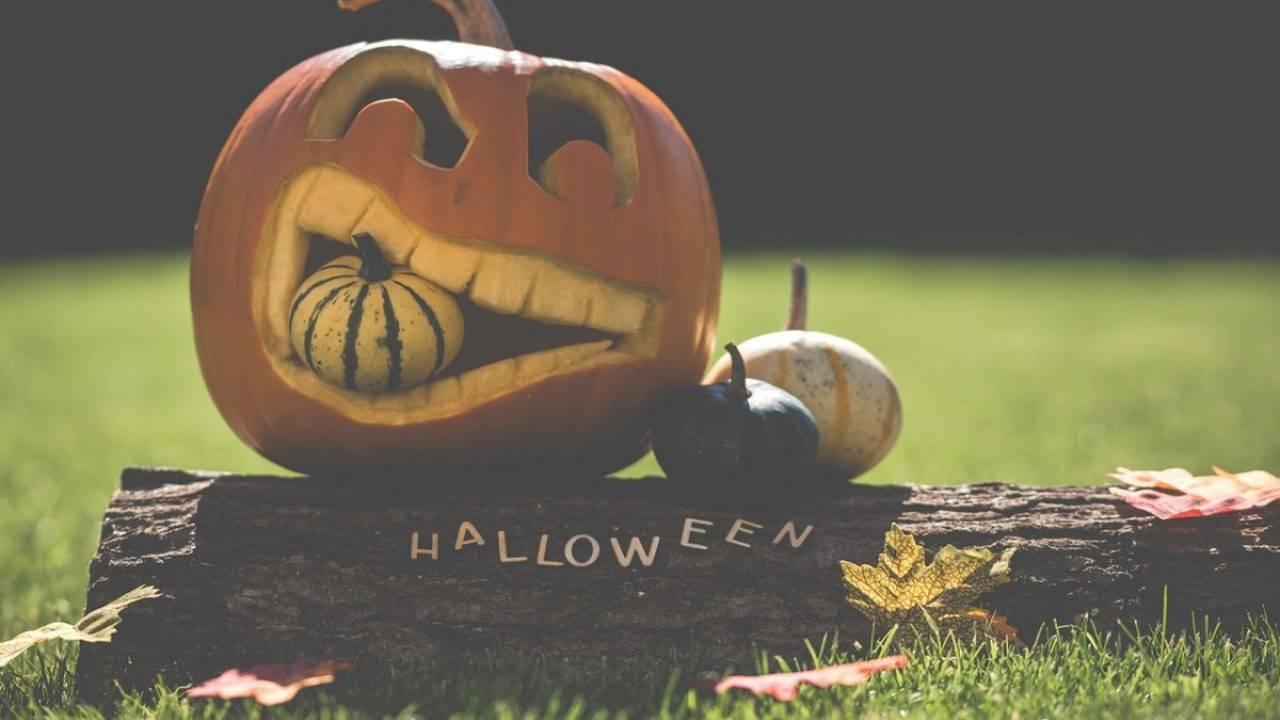 Шоколадные пирожные на хэллоуин