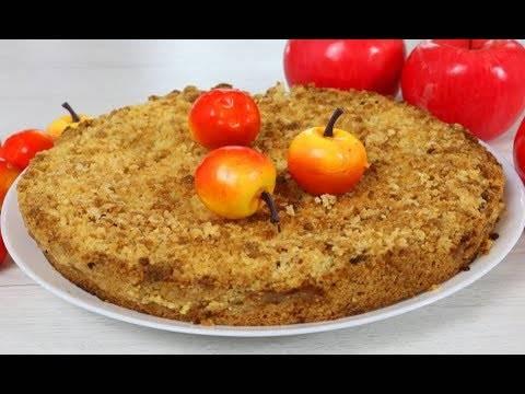 Яблочный пирог и бисквиты с яблоками: 2 рецепта. есть теплыми! рецепты домашних пирогов с яблоками