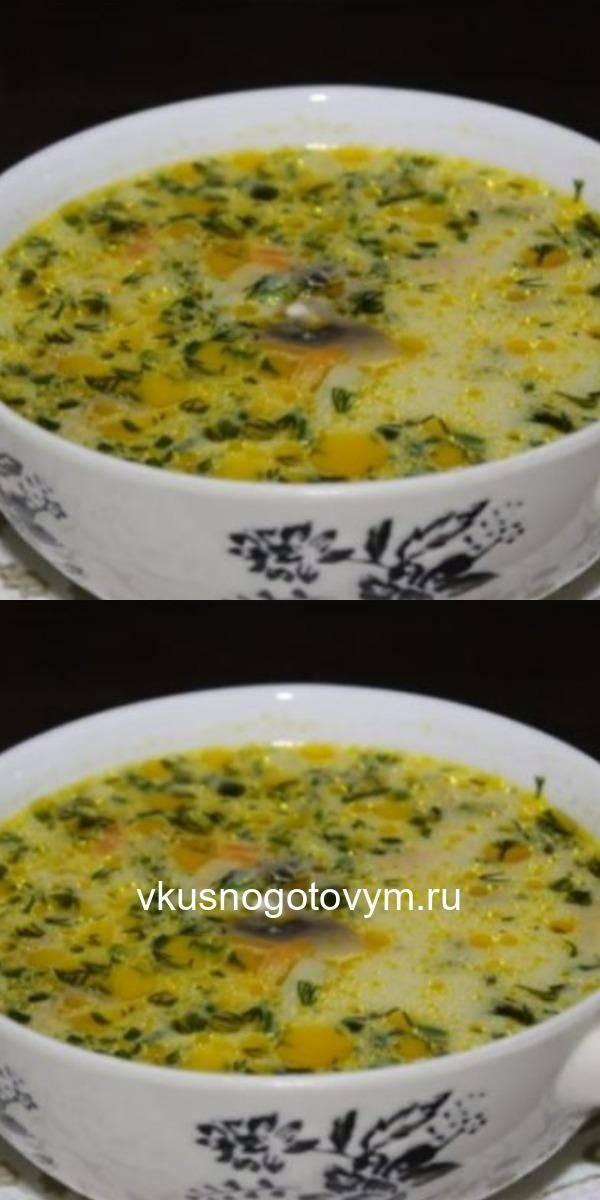 Грибной суп на курином бульоне/ рецепт с фото