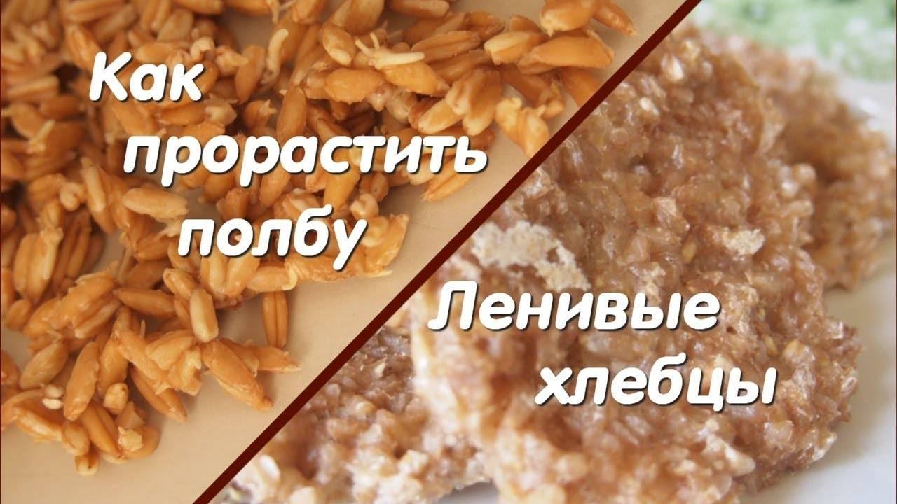 Хлеб из проросшей пшеницы дает пользу организму